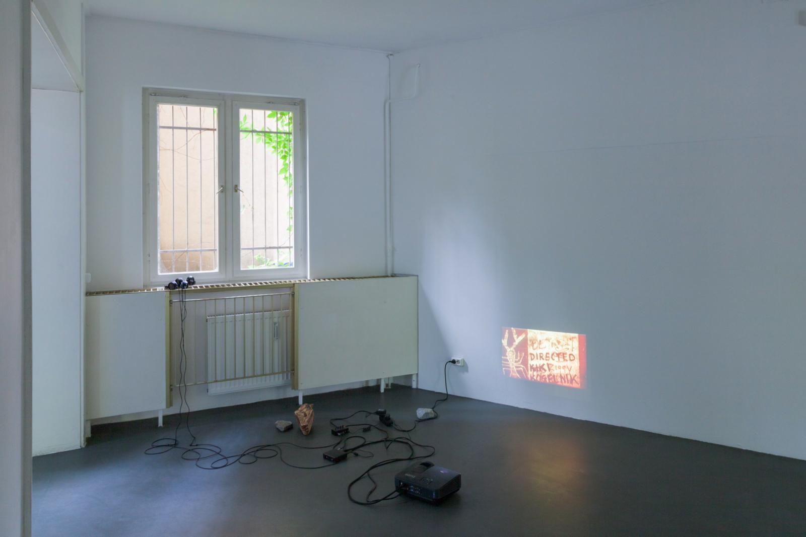 Installation view Kiki Kogelnik