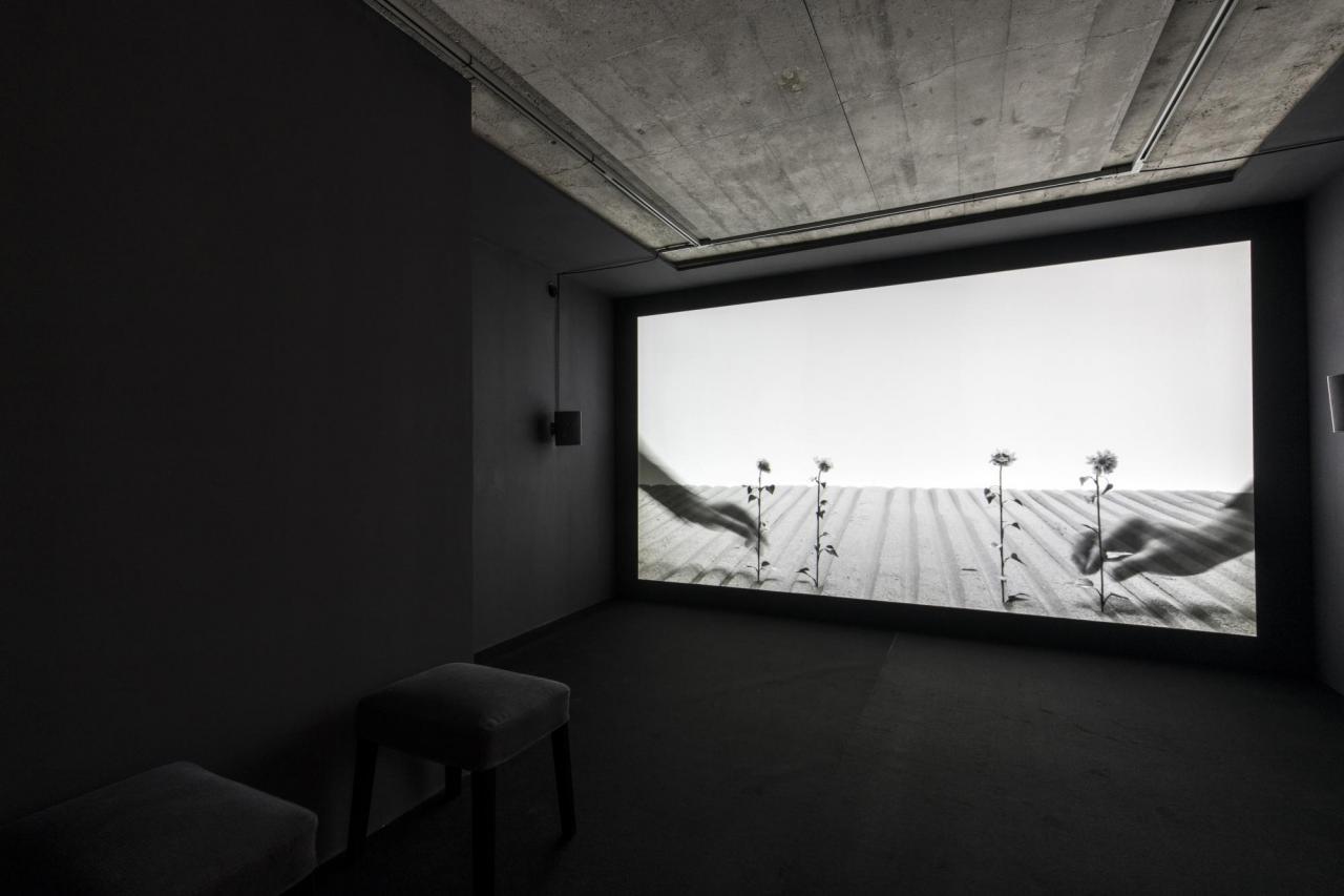 HANS OP DE BEECK, Staging Silence 3 , 2019 FullHD-Video schwarzweiß mit Ton, 44'. Courtesy Studio Hans Op de Beeck und Galerie Krinzinger. Fotografie: Dominik Gigler.