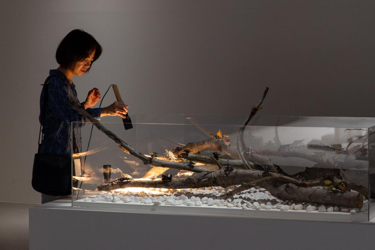 Chen Chu-Yin + Solar Insects Vivarium Workshop, Paris 8 University Neo Eden—Solar Insects Vivarium (2015–2018)
