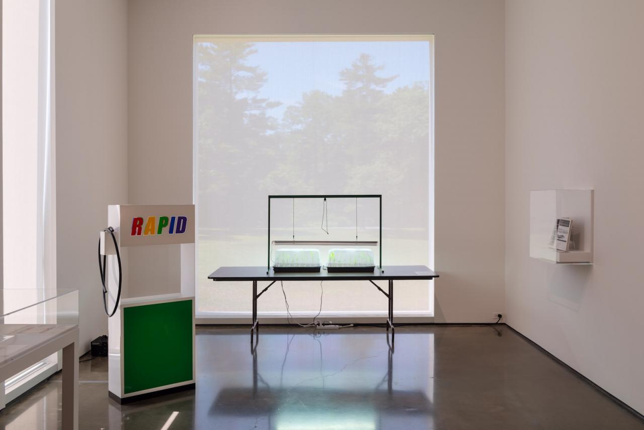 """The Conditions of Being Art: Pat Hearn Gallery and American Fine Arts, Co. (1983–2004)"", Hessel Museum of Art , 2018"