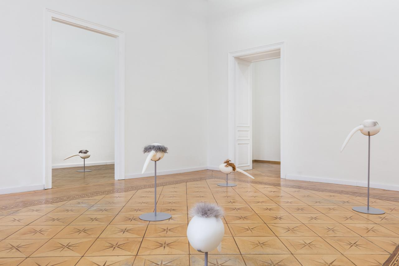Marlie Mul, installation view Sperms Going to aFashion Show , Croy Nielsen, Vienna, 2021