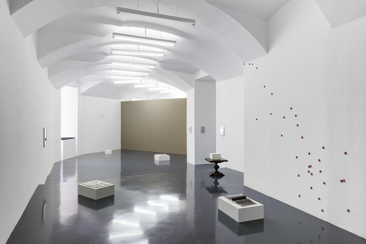 """Installation view, """"A Sculpture in Search of an Author"""" curated by Studio for Propositional Cinema atLayr"""