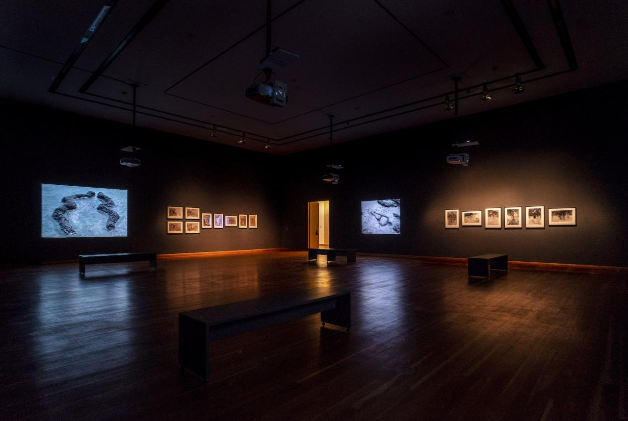 Exhibition View © The Estate of Ana Mendieta Collection; Courtesy Galerie Lelong & Co.; Photo: Mathias Völzke