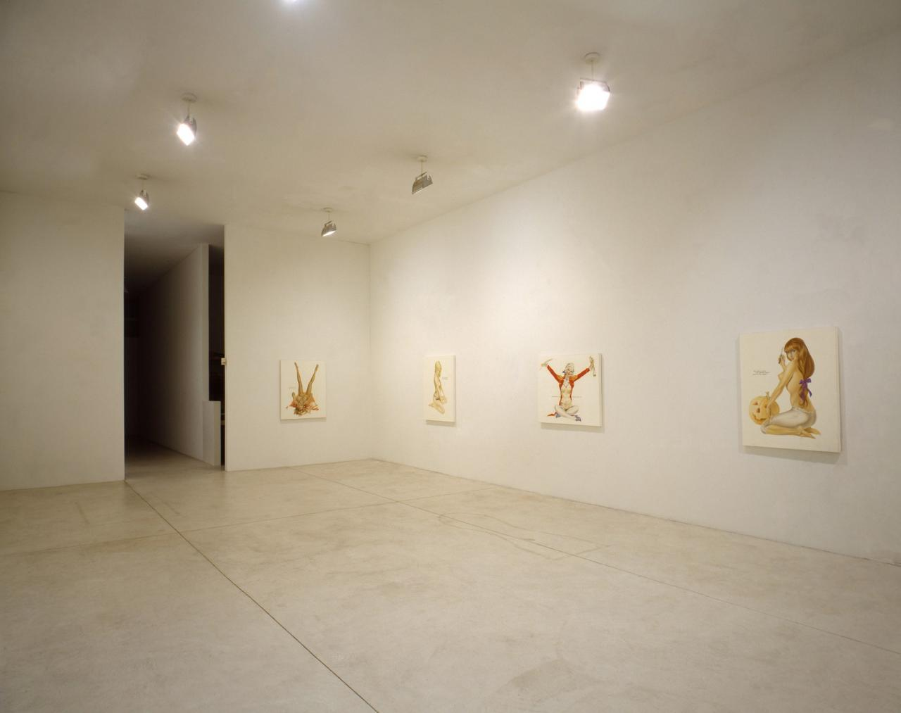Installation view  Playboys Pat Hearn Gallery, New York 1993 Photo: Tom Warren