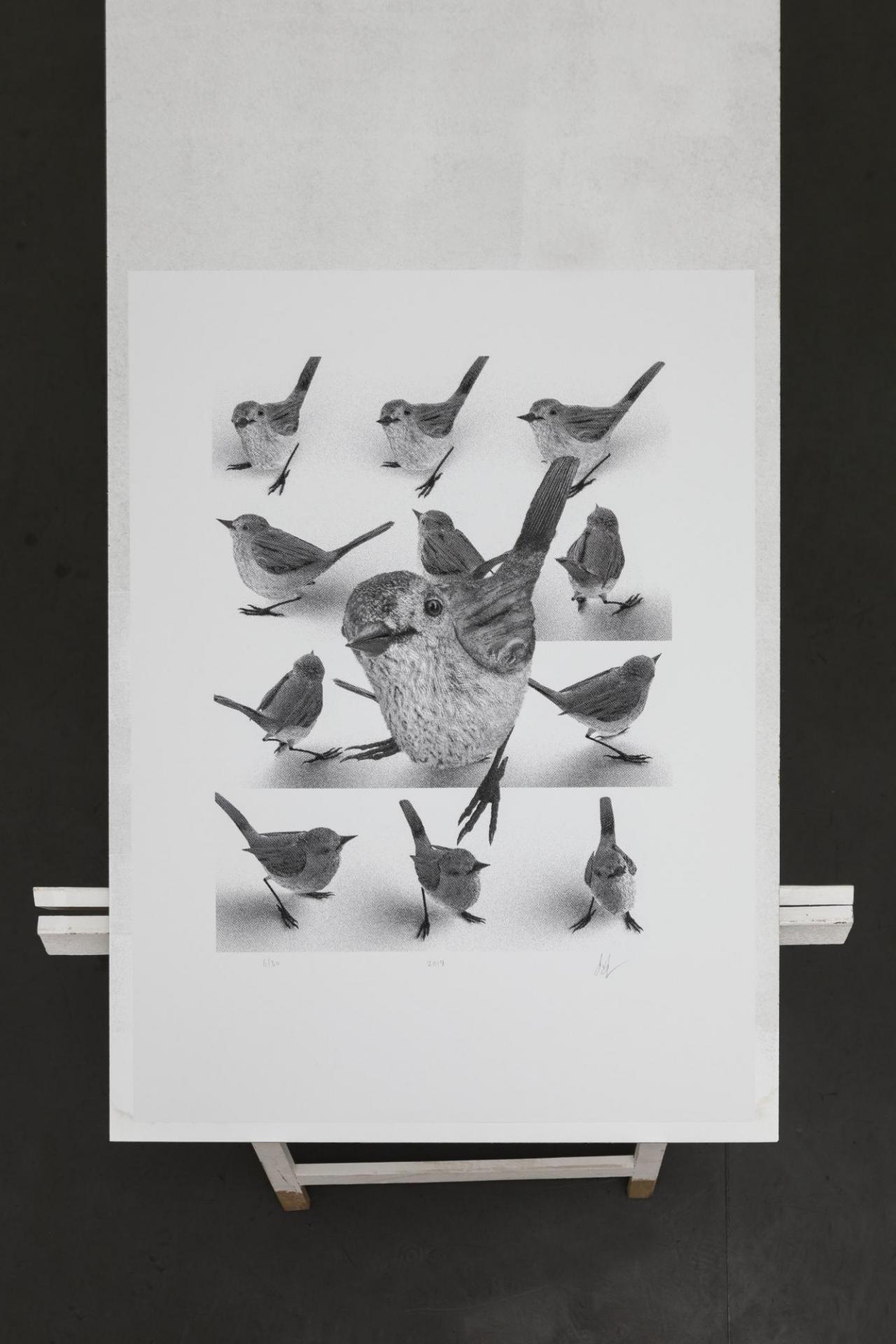 Simon Denny Extinction Hedge Avatar (King Island Brown Thornbill) , 2019 Silk screen on paper
