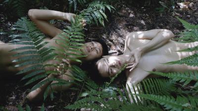 Stillfrom Pteridophilia IV , 2019 4K video, colour, sound, 16 min.
