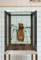 Louise Bourgeois Spider (2006) © The Easton Foundation; Foto: Andrea Rossetti