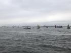 Greta's flotilla