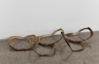 Untitled ,Turtle shells, 45 x 80 x 14 cm