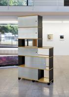 Reni Shulman-Trudinger, Typ II (1956)