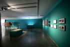 Robert Zhao Renhui Installation view © Photo: Courtesythe Yinchuan Biennale