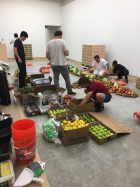 Handling produce for an Urs Fischer installation.